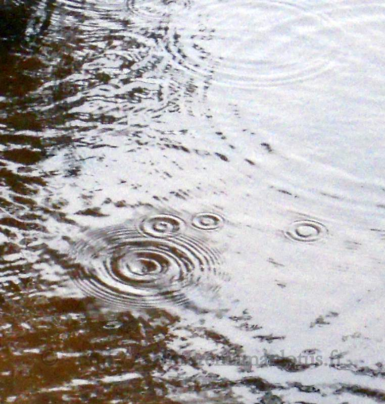 CERCLES_PLUIE